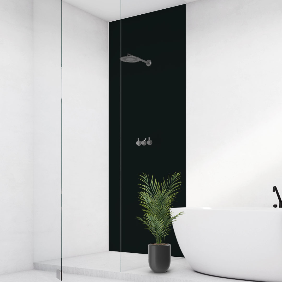 Duschrückwand schwarz