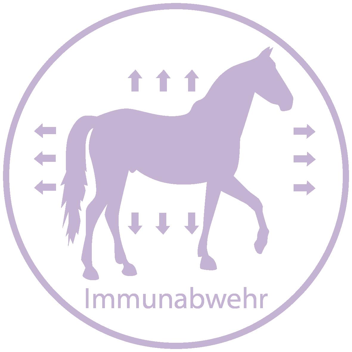 Raika Pferdefutter Kräuter Immunabwehr