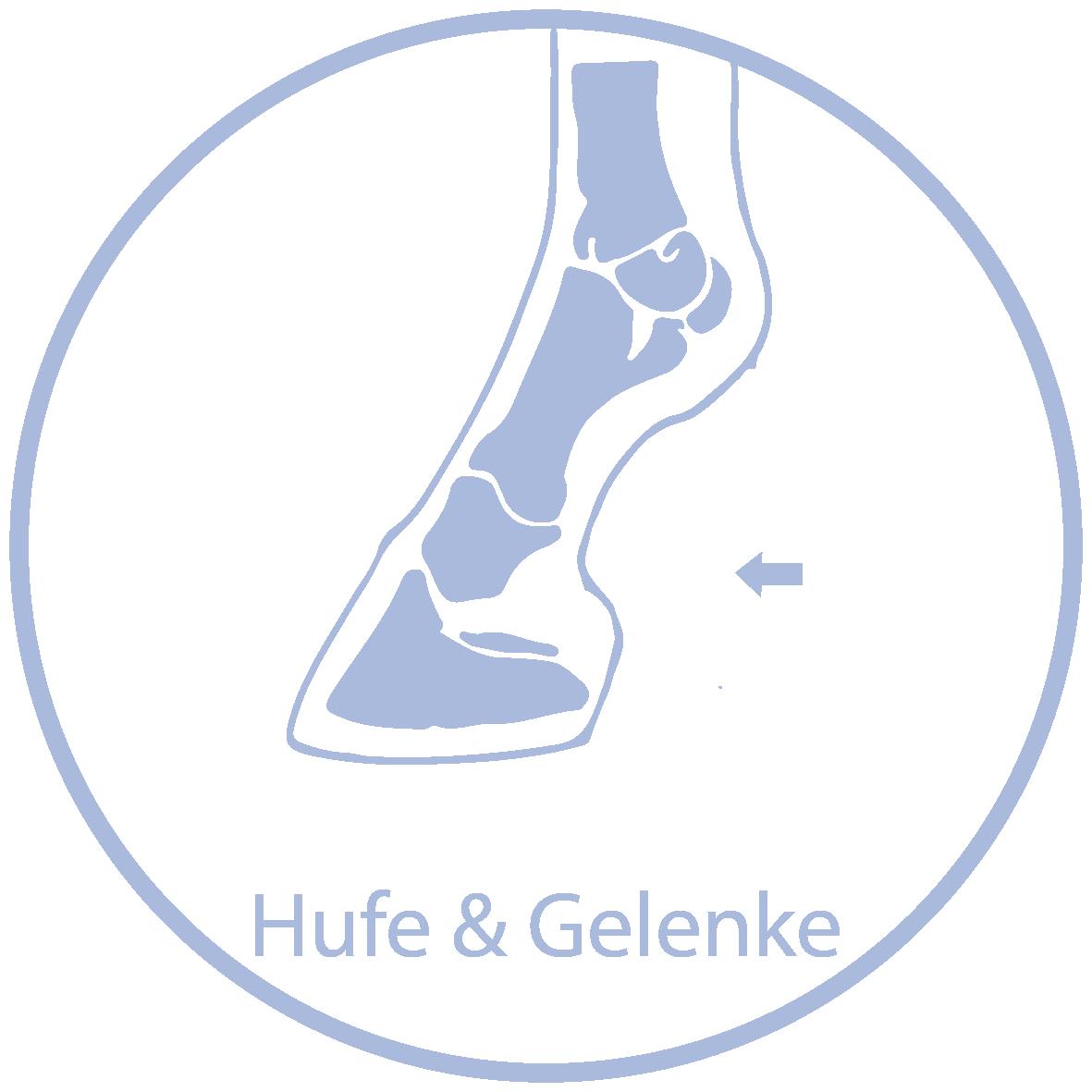 Raika Pferdefutter Kräuter Hufe & Gelenke