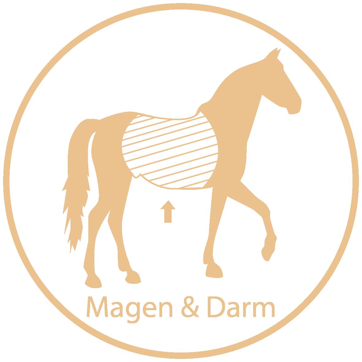 Raika Pferdefutter Kräuter Magen & Darm