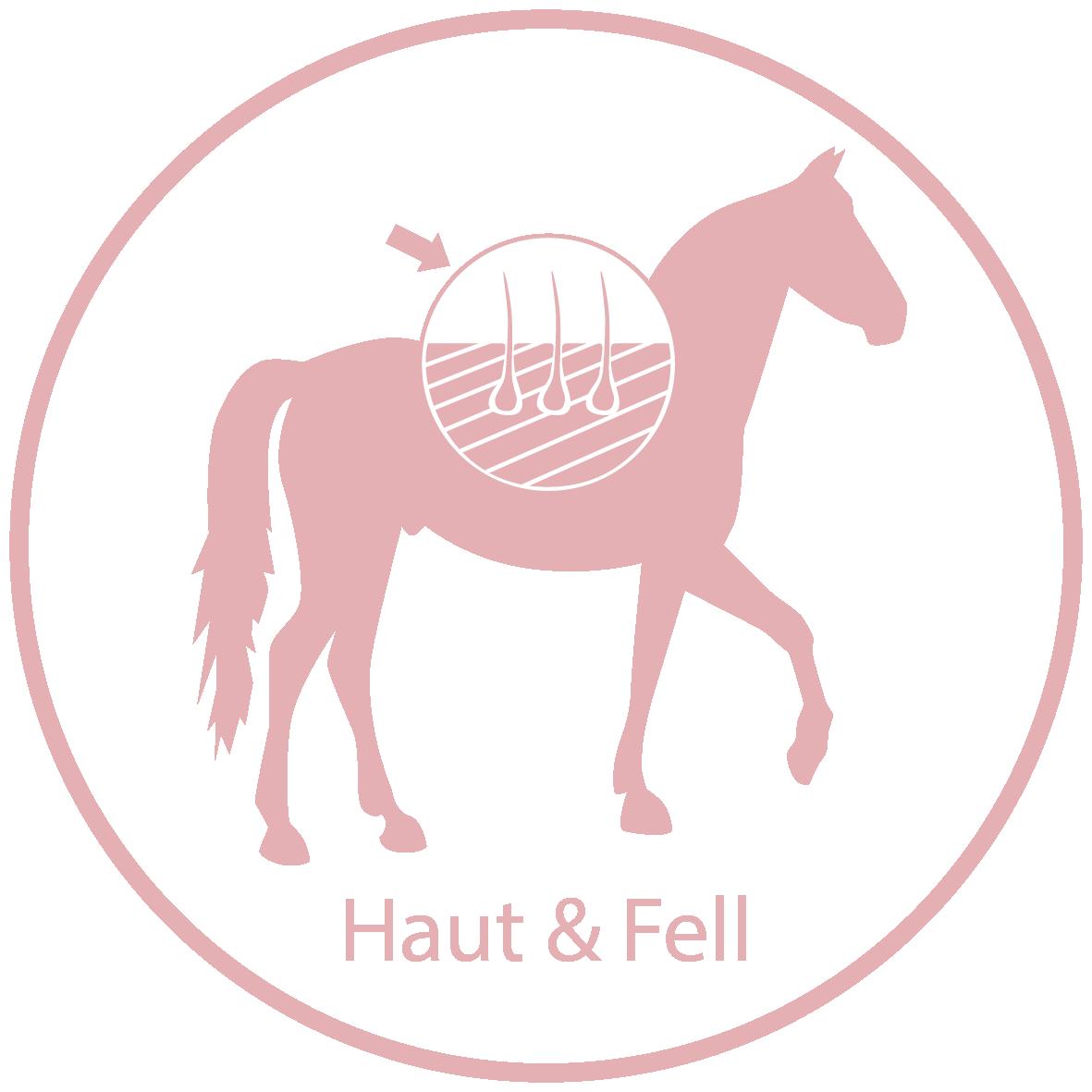 Raika Pferdefutter Kräuter Haut & Fell
