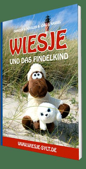 Wiesje und das Findelkind - Kinderbuch DIN A5